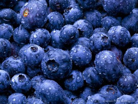 blauwe bessen zijn zeer gezond